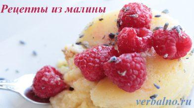 Рецепты из малины без термической обработки.