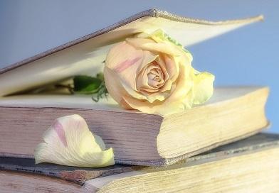(Не-) литературное чтение. Часть 3. – Чтение желанное.